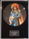 "NEIL DIAMOND  - Framed 12"" Picture  Disc - GREATEST HITS"